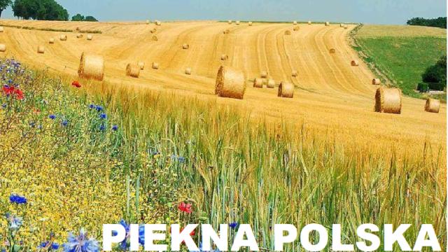 Piękna POLSKA – wakacje w kraju czy za granicą?